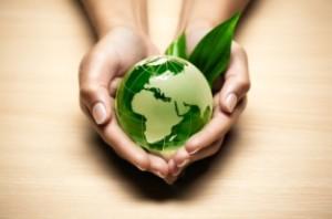 Environmentalhandsy